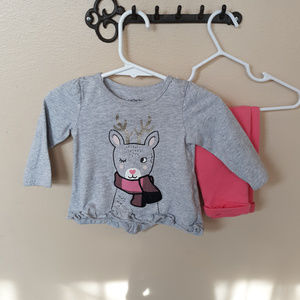 EUC baby girl Carters outfit